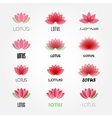 lotus flowers design for spa resort vector image