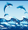 cute dolphins aquatic marine nature ocean blue vector image