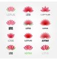 lotus flowers design for spa resort vector image