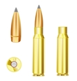Cartridge case and bullet from weapon vector image