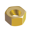 Golden nut vector image