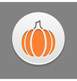 Pumpkin icon Vegetable vector image