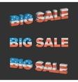Big Sale with USA flag texture vector image