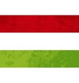 True proportions Hungary flag with texture vector image