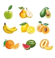 Colorful fruit icons set apple vector image