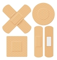 Medical Bandage vector image vector image