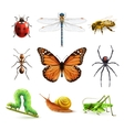 Insects realistic set vector image