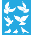 Set of pigeon silhouettes - flying and sitting vector image vector image