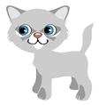 Pretty gray kitten with blue eyes cartoon pet vector image