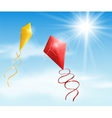 Two kite vector image