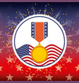 award medal and american flag bright badge vector image