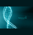 abstract dna double helix vector image