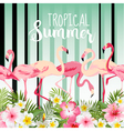 Flamingo Bird Background Retro Pattern Tropical vector image