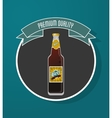 Beer bottle icon Drink and beverage design vector image