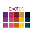 Exotic Color Tone without Code vector image