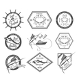 Set of Seafood Labels and Signs vector image