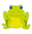 cartoon animal frog vector image