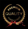 Premium quality laurel wreath vector image