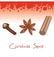 christmas spice vector image