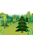 green forest with different types of trees vector image