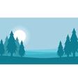 spruce landscape silhouette vector image