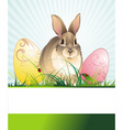 banner with an easter rabbit vector image