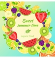Fruits bright composition vector image vector image
