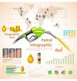 Petroleum Infographic vector image