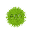 spring grass circle shape with water drops vector image