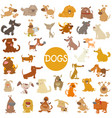 funny dog characters big set vector image vector image