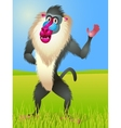 baboon cartoon vector image
