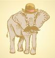 Elephant Hat vector image