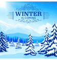Winter Landscape Poster vector image