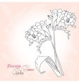 Pink background with freesia vector image