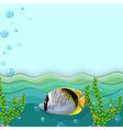 A fish under the sea vector image