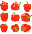 Pepper set of red peppers on vector image