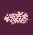 abstract decorative frangipani floral vector image
