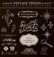 Calligraphic design elements vintage set ornament vector image vector image