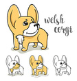 Dogs characters Doodle dog Funny character vector image
