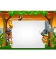 Wild African animal cartoon with blank sign vector image vector image
