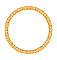 Golden chain - round frame on the white background vector image