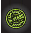 15 years experience vector image vector image