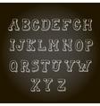 Vintage hand drawn decorative alphabet on vector image