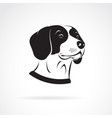 beagle dog head on a white background pet vector image