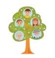 Cartoon generation family tree in flat style vector image