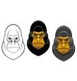 Danger gorilla monkey mascot vector image
