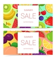 Fruits bright banners vector image vector image