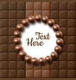 chocolate flat lay vector image