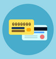credit cards icon mobile banking online payment vector image