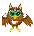 Cartoon of the owl on white vector image